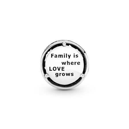 Family Roots Charm