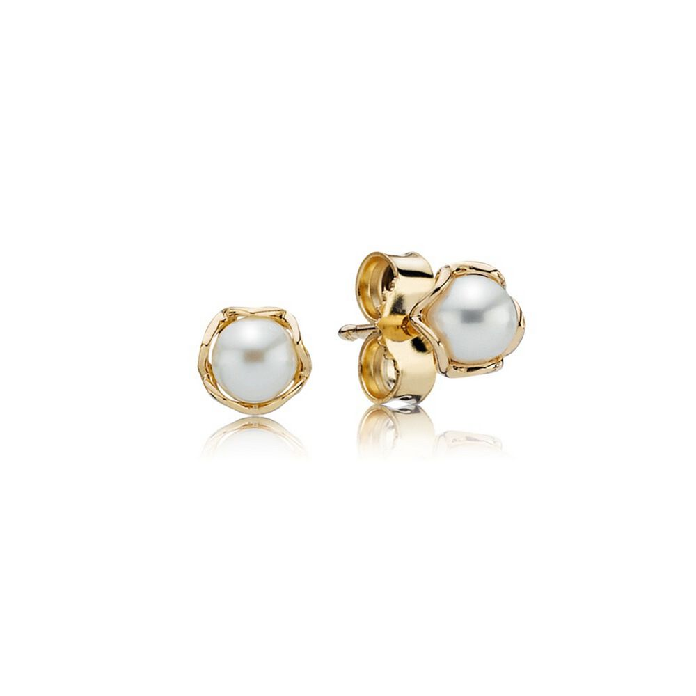 Cultured Elegance Stud Earrings Pearl 14k Gold