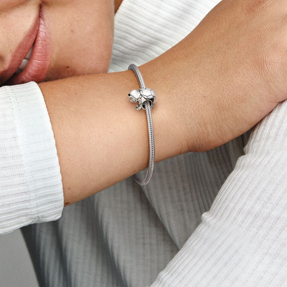 Bright-Eyed Turtle Charm | Animal Charms | Sterling silver ...