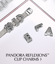 Reflexions Clip Charms