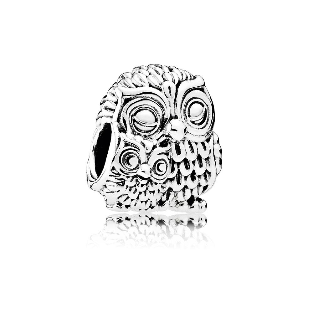 Charming Owls Charm