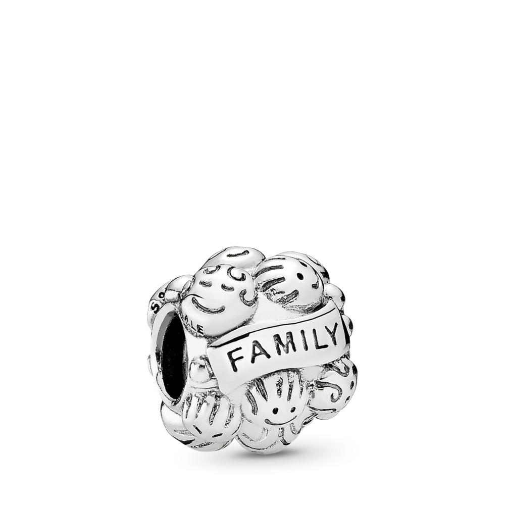 Love & Family Charm, Sterling silver - PANDORA - #791039