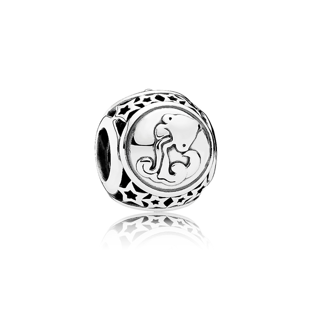Aquarius Star Sign Charm, Sterling silver - PANDORA - #791934