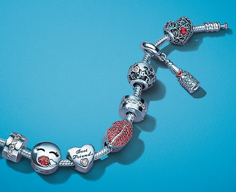 Your story is one of a kind. Discover what charms tell your story best!